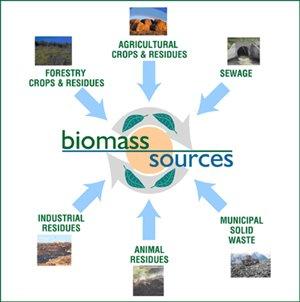 bioenergy types