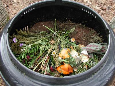 composting wood ash
